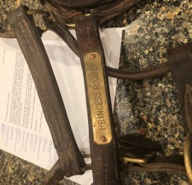 Princess Rooney Halter with COA