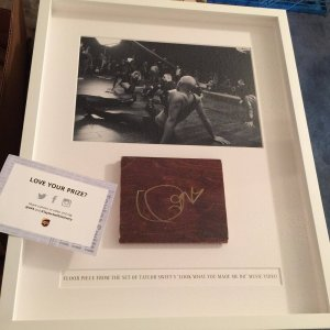"""Taylor Swift signed AUTOGRAPHED shadowbox memorabilia from """"Look What you Made me do"""" video"""