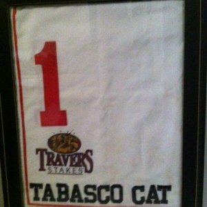 Tabasco Cat Travers Stakes saddle cloth