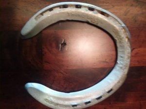 Zenyatta Track Worn Horseshoe w/COA RARE!