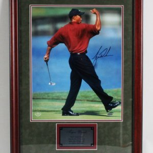 Tiger Woods Signed Photo Display - COA UDA