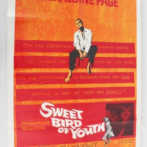 1962 Sweet Bird of Youth Movie Poster One Sheet 62/98