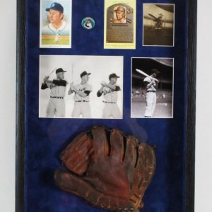Al Kaline Signed Glove Display Tigers - COA JSA