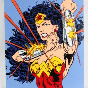 Steve Kaufman Artwork Wonder Woman