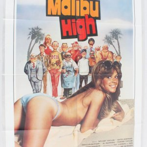 1979 Malibu High Movie Poster One Sheet 790028