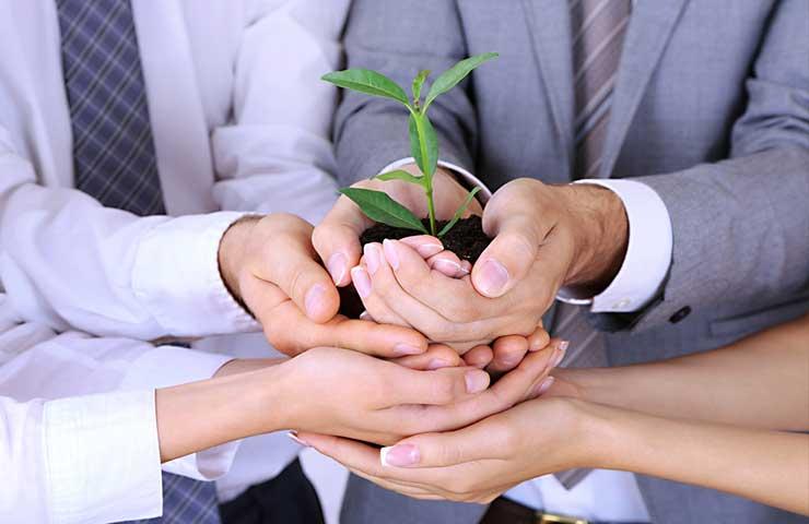 Las empresas verdes