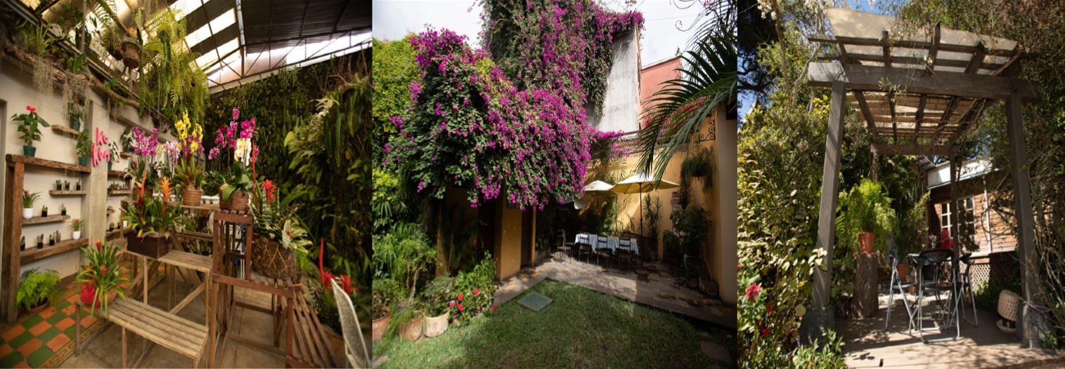 3  Restaurantes para comer delicioso y pasarla entre las flores