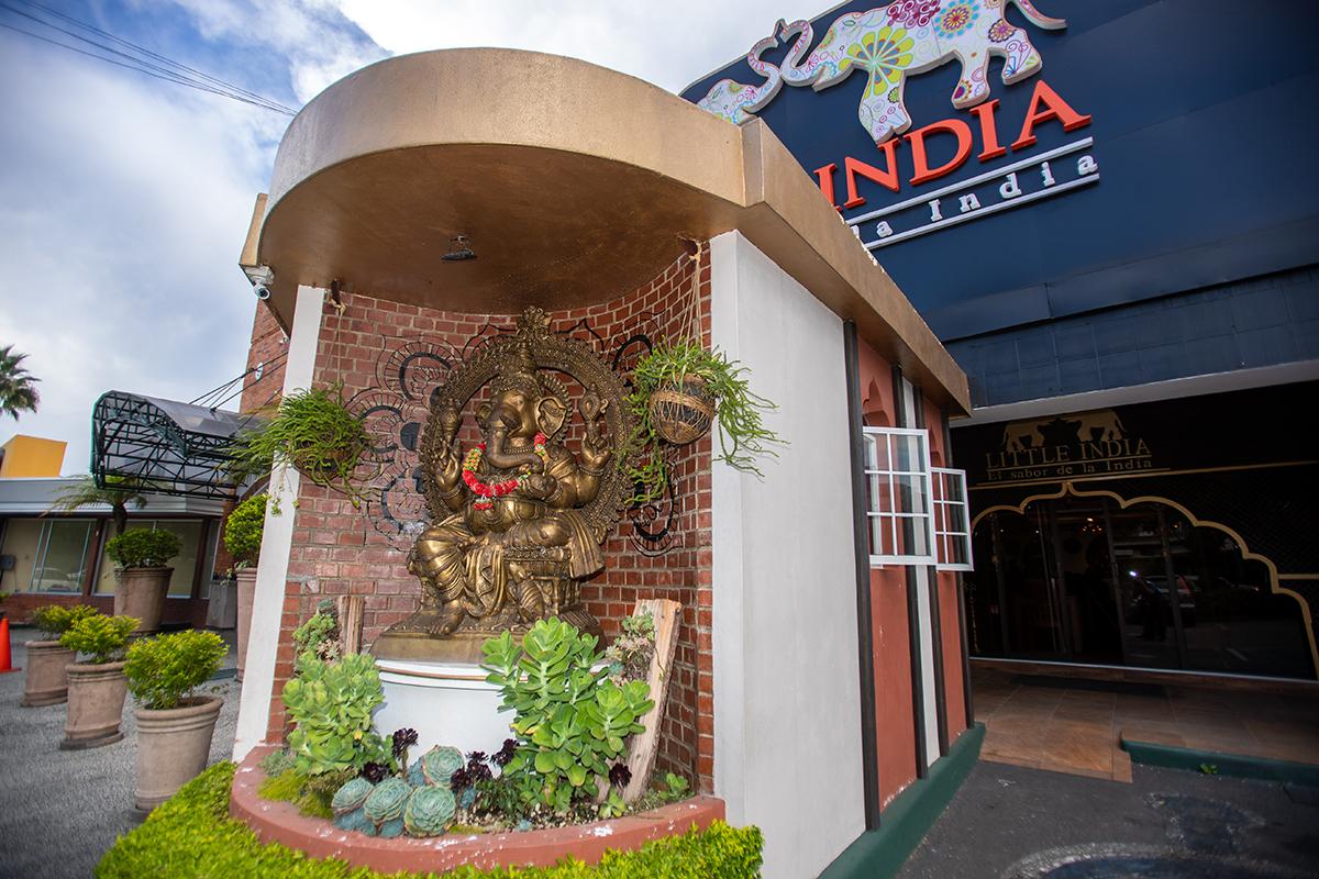 Lugares para comer delicias exóticas