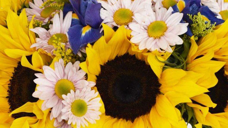 5 ideas de decoración con flores para transformar los espacios de tu casa