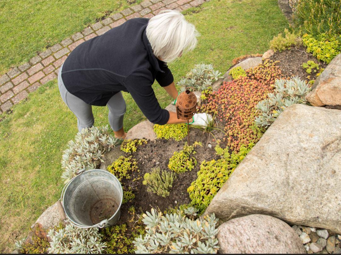 El jardín de rocas, una opción original y de fácil mantenimiento