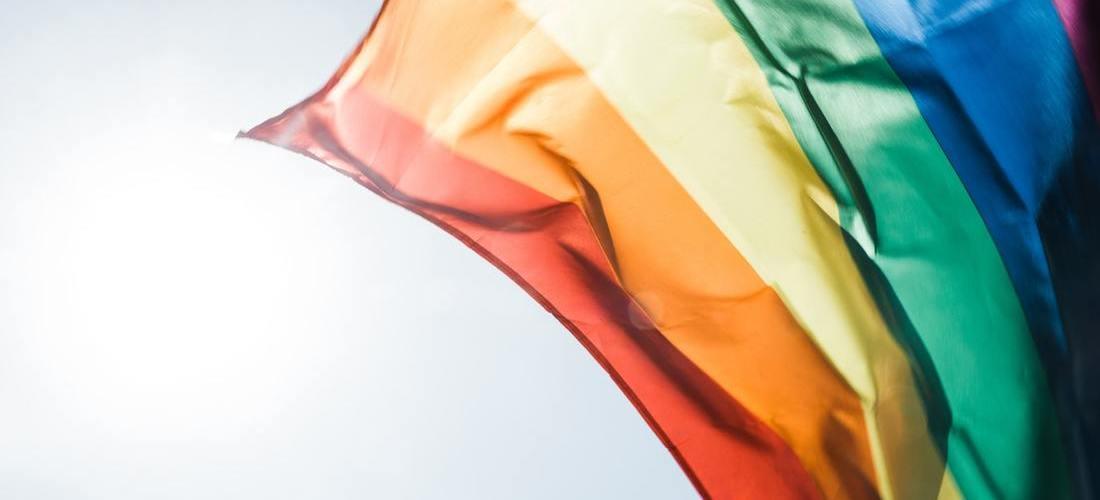 Desfile-de-la-diversidad-sexual-1
