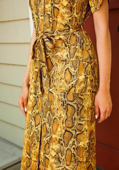 Tansy Snake Print Shirt Dress