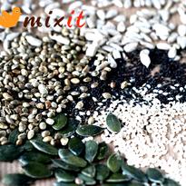 Seeds logo final