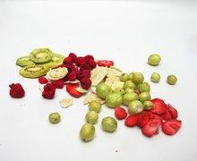 Savourez des fruits délicieux toute l'année!