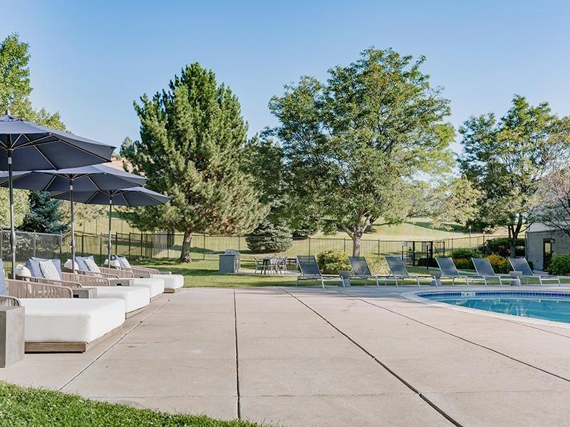 Swimming Pool Lounge | Kallisto at Bear Creek Lakewood Apartments
