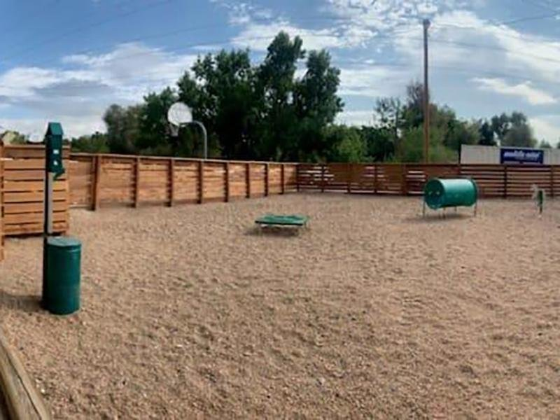 Dog Park | Eagle Crest Apartments
