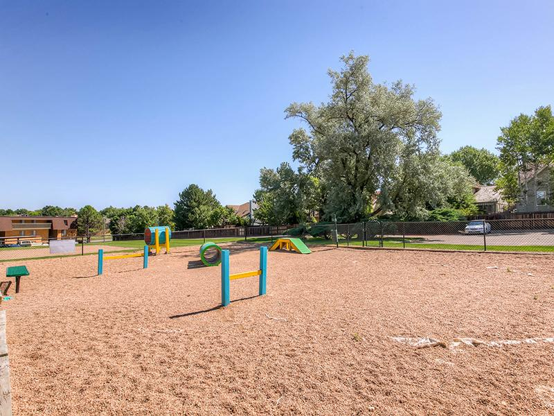 Pet Park | 3300 Tamarac Apartments For Rent In Denver CO