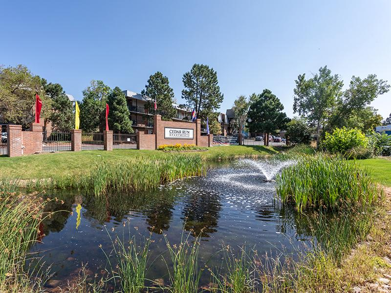 Front Pond | Cedar Run Apartments