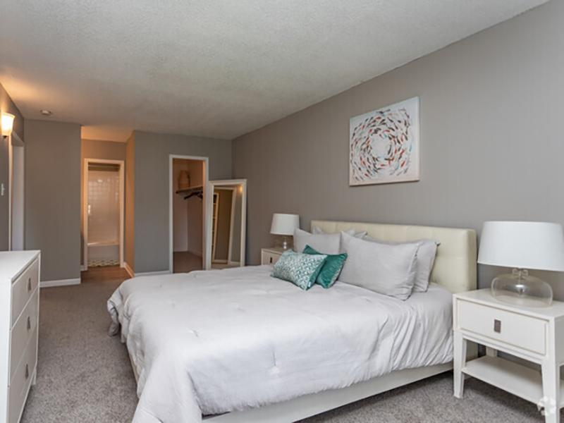 1 Bedroom Apartment | Cedar Run Apartments