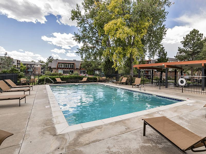 Resort-Style Swimming Pool | Cedar Run Denver