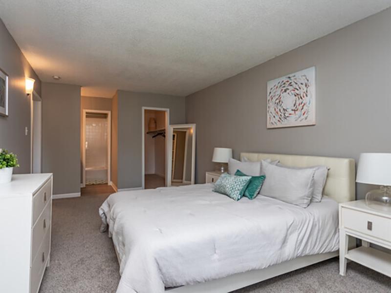 1 Bedroom Apartment   Cedar Run Apartments