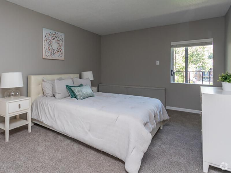 1 Bedroom Apartment With Walk-In Closets | Cedar Run Apartments