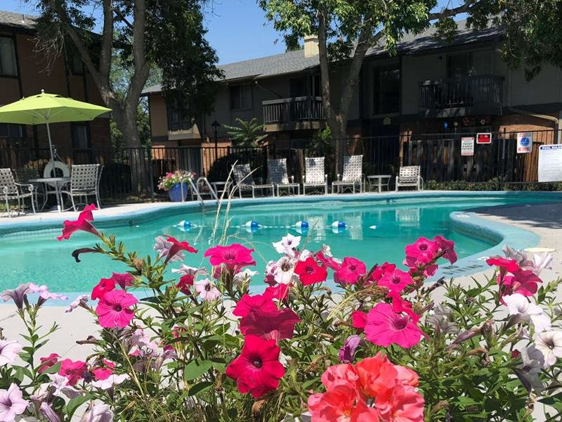 Pool | Forest Cove Apartments for rent