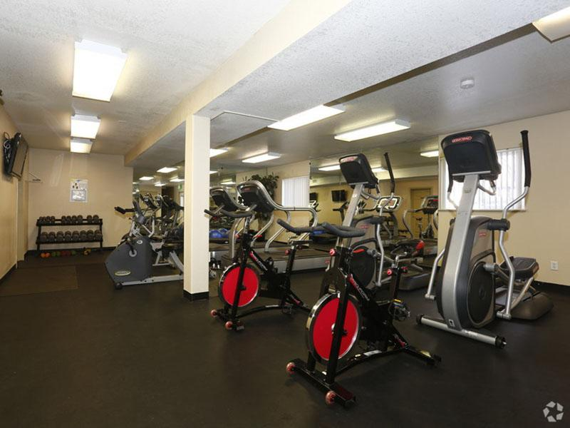 Fitness Center - Apartments with a Gym in Colorado