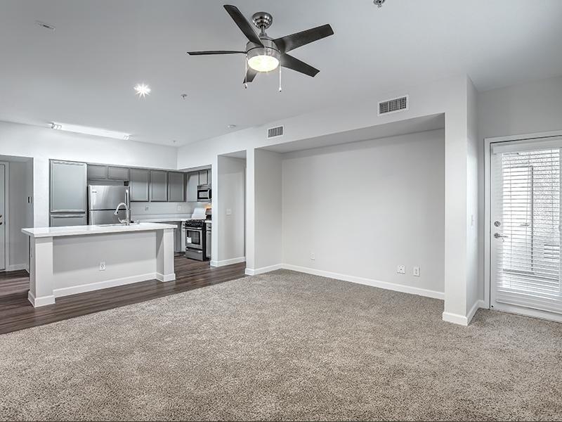 Spacious Apartments in Las Vegas