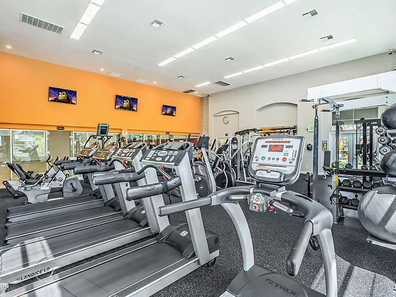 Gym | The Avondale Apartments