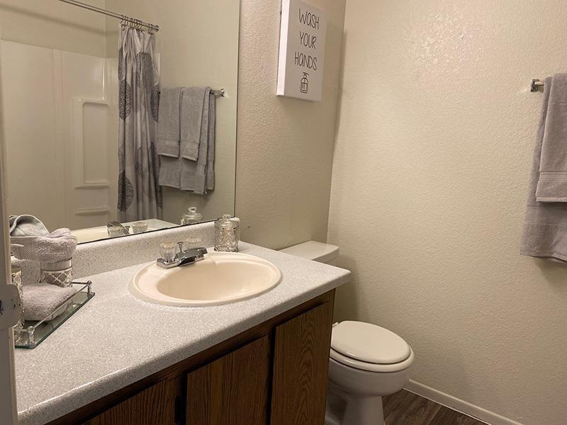 Bathroom | Falcon Glen Apartments in Mesa, AZ