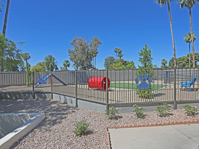Dog Park | Fiesta Park Apartments in Mesa, AZ