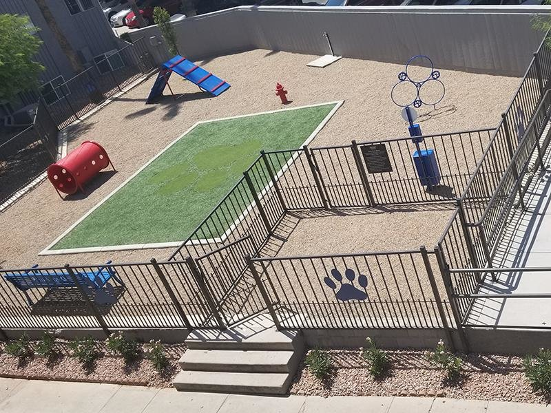 Dog Park| Fiesta Park Apartments in Mesa, AZ