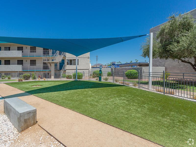 Dog Park | Avalon Apartments
