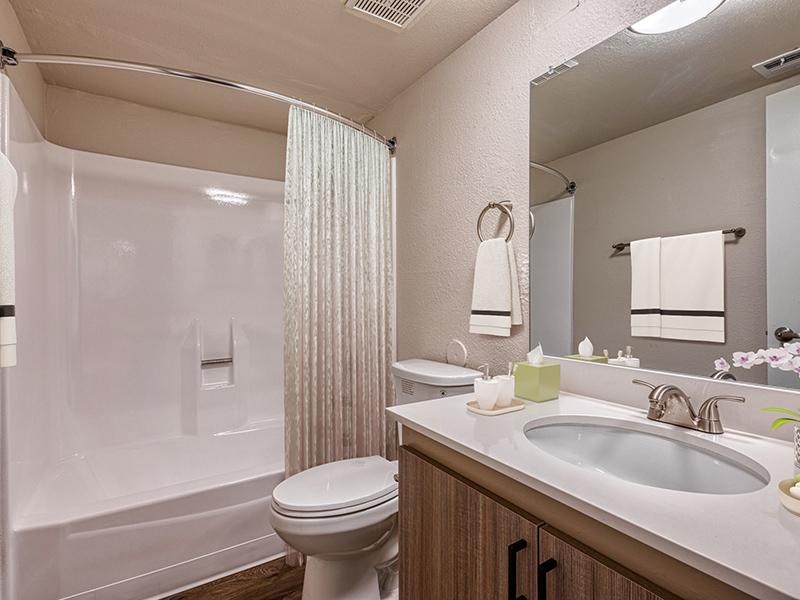 2x2 Bathroom | Park Paloma Apartments