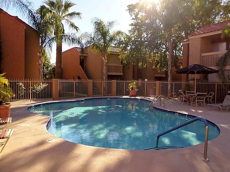 Park Paloma Pool | Phoenix, AZ