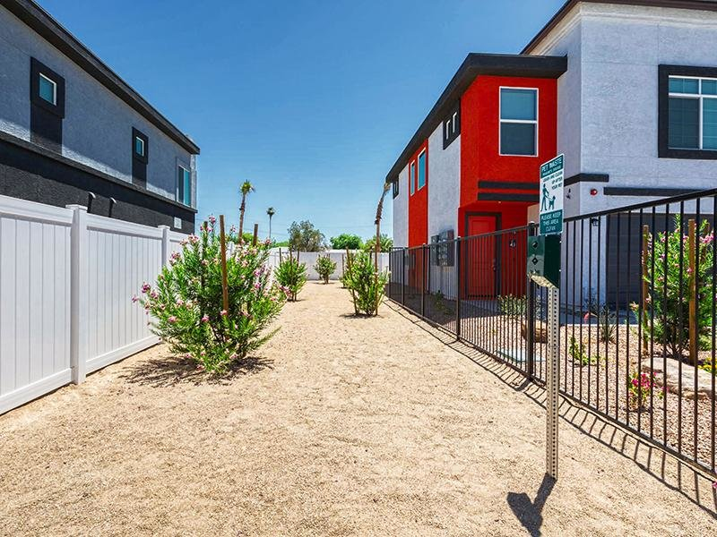 Dog Run | Ara Residences in Phoenix, AZ