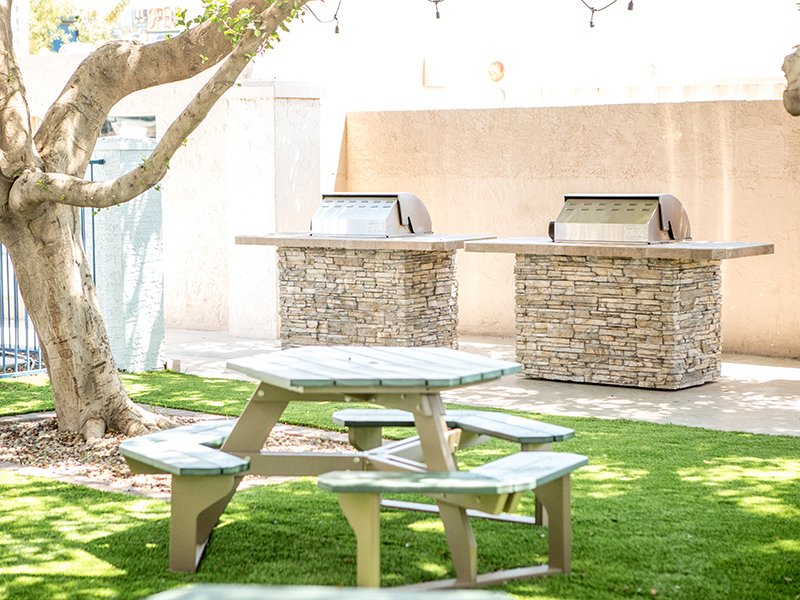 BBQ Grills & Picnic Area | Vivo Mesa