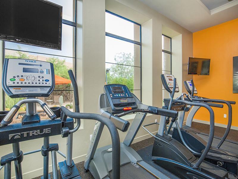 Gym | Legacy at Dove Mountain