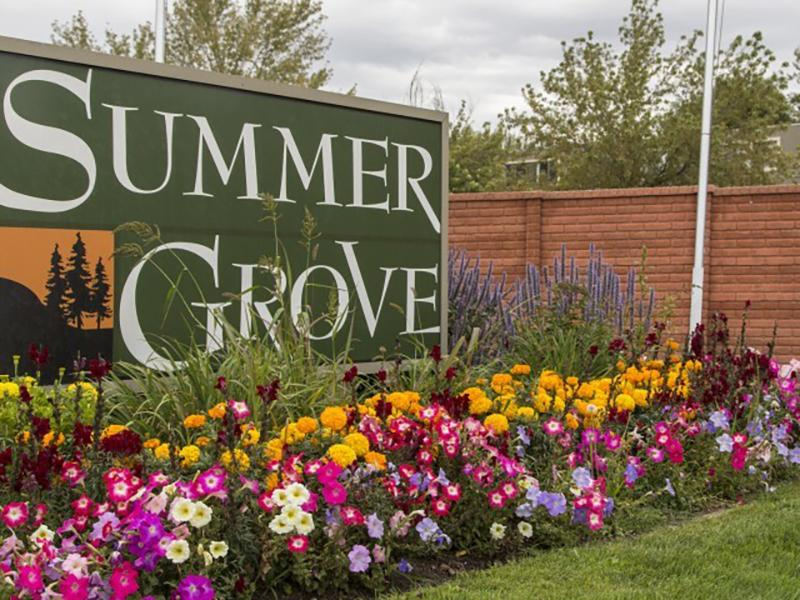 Sign | Summer Grove
