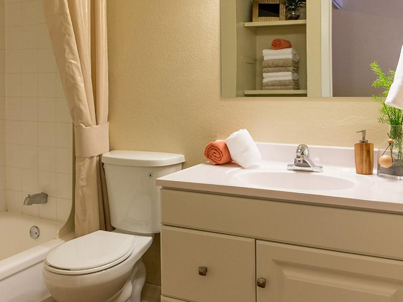 Apartment Bathroom | Timber Lodge Thornton Colorado