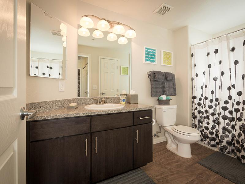 Bathroom | Cornerstone Park Apartments in Henderson NV