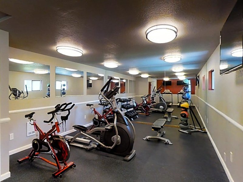 Gym | The Union