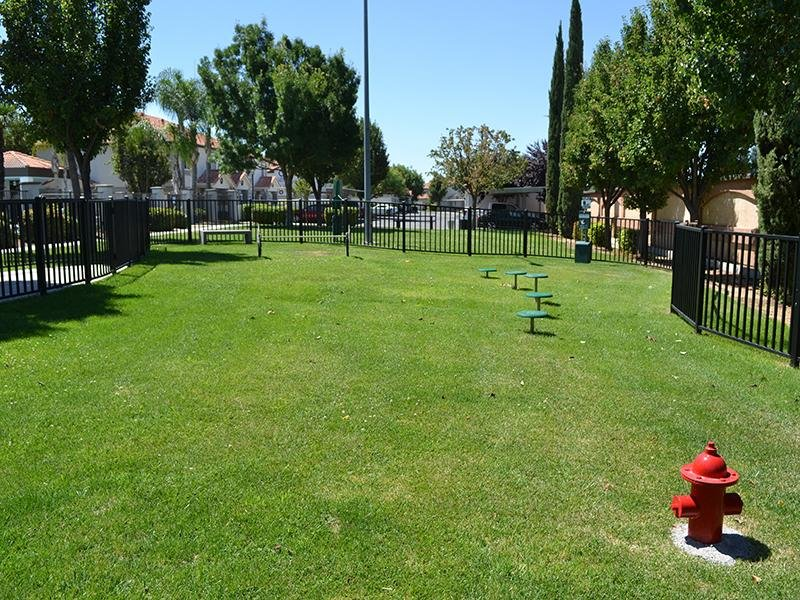 Bark Park | Ascent Townhomes in Fresno, CA