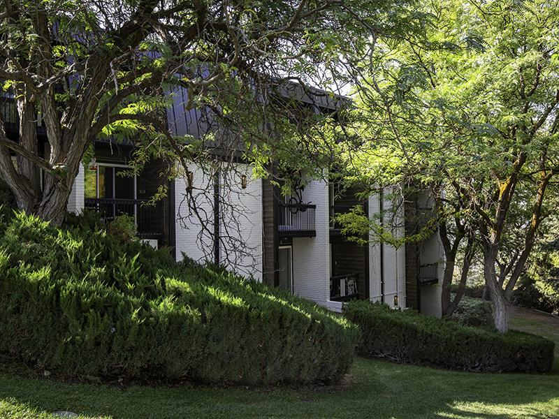 Lush Greenery | Lookout Pointe Apartments in Provo, UT