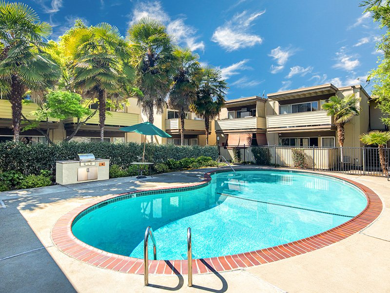 Swimming Pool   Enclave Apartments in Walnut Creek, CA
