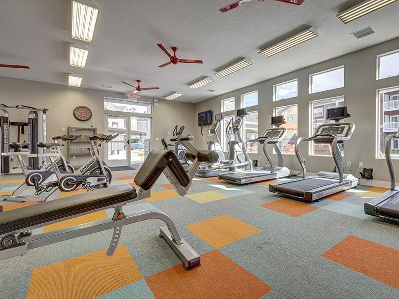Gym | Alloy at Geneva