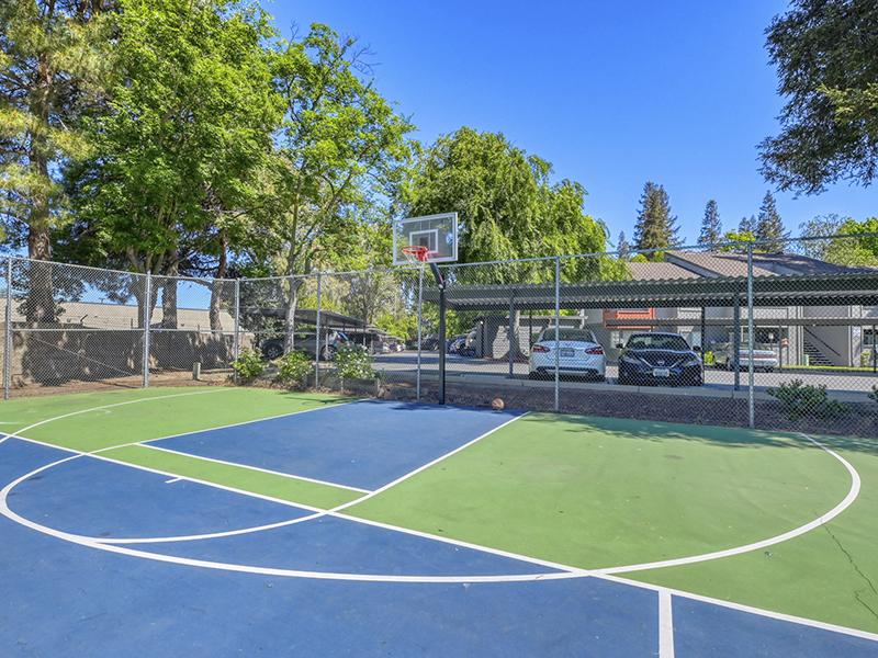 Basketball Court | The Vue Apartments in Sacramento, CA
