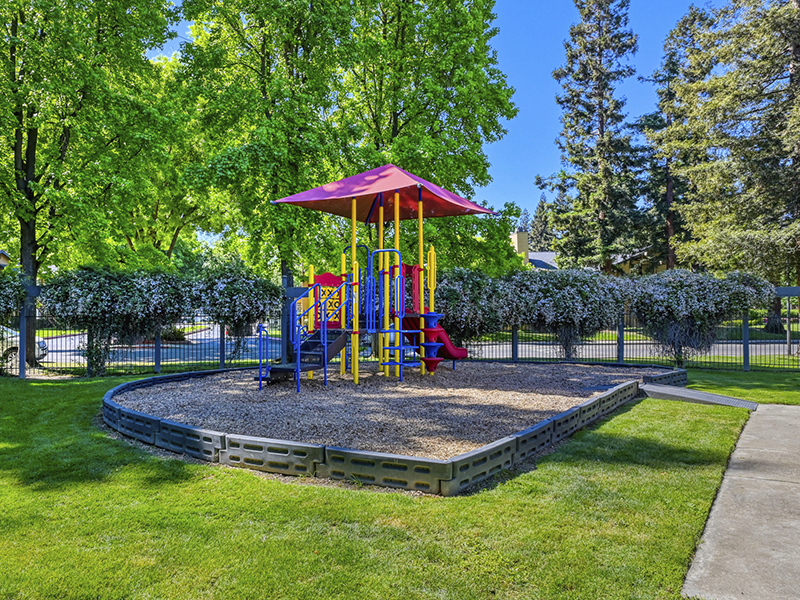 Playground | The Vue Apartments in Sacramento, CA