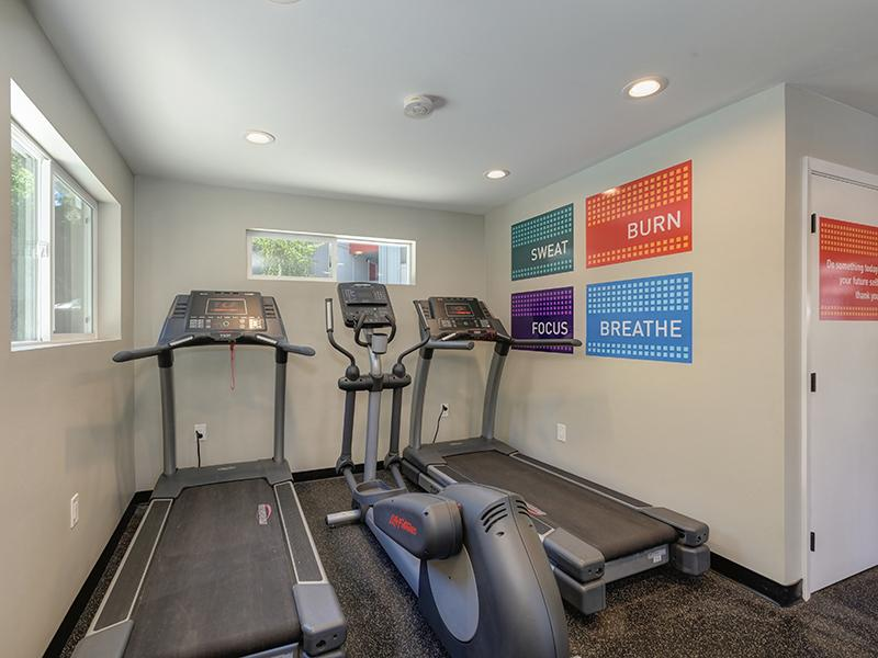 Fitness Center | The Vue